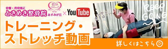 トレーニング・ストレッチ動画